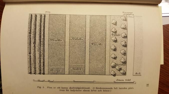 plan-c3b6ver-ett-barns-kc3b6ksvc3a4xtland-g-lind-1922.jpg