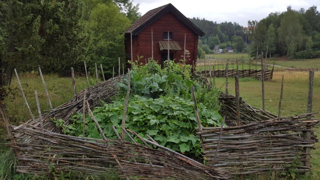 Kålgård omgärdat av ett flätgärde