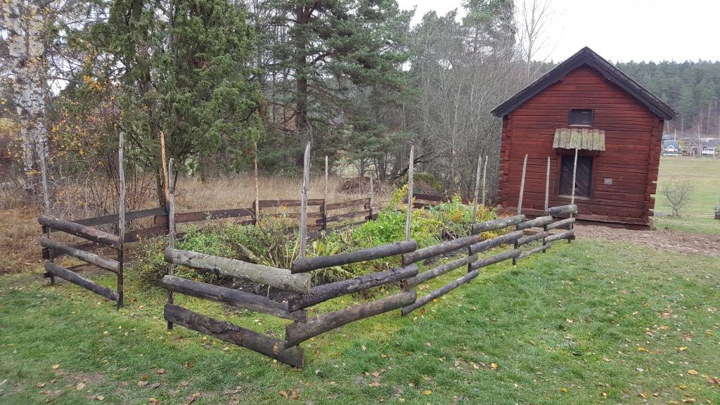 Kålgården med ett nytt staket av bakbrädor